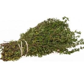 Aromatique thym en pot de 13cm
