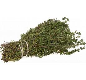 Thym varie en pot de 14cm 1,2 litres