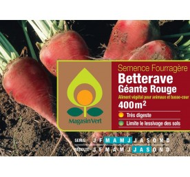 Semence fourragere betterave rouge        0,2 kg