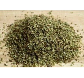 Aromatique origan en pot de 13cm