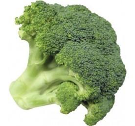 Plant chou brocoli en barquette de 6
